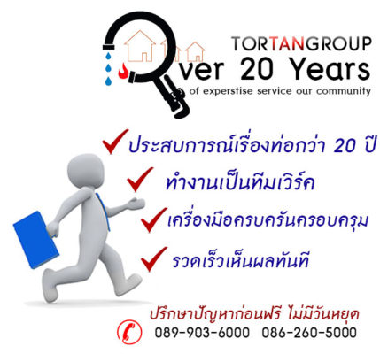 expertover20years